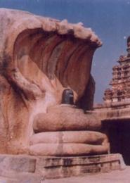 Le Saptaphani Nagendra